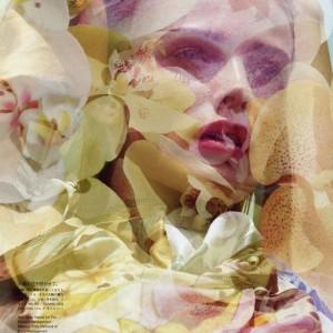 Amor a la esencia femenina: Venus entra en Cáncer